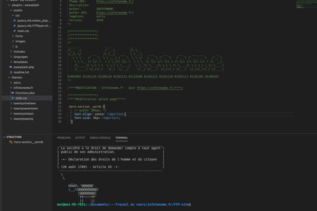 infotonome-accompagnement-informatique-developpement-site-internet-bretagne-paimpont-mauron-ploermel-plelan-le-grand